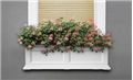 Fairfield Planter Window Box