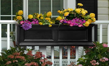 Black window box